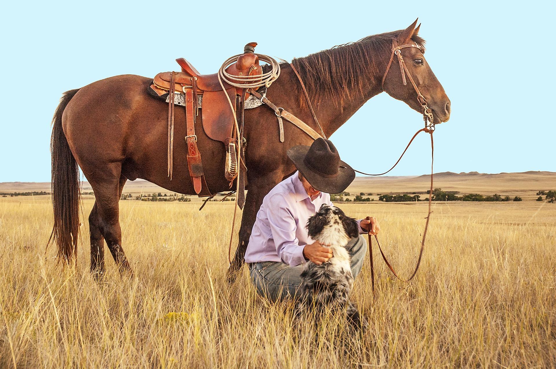 Canada bucketlist reis cowgirl met paard en hond op de prairie.