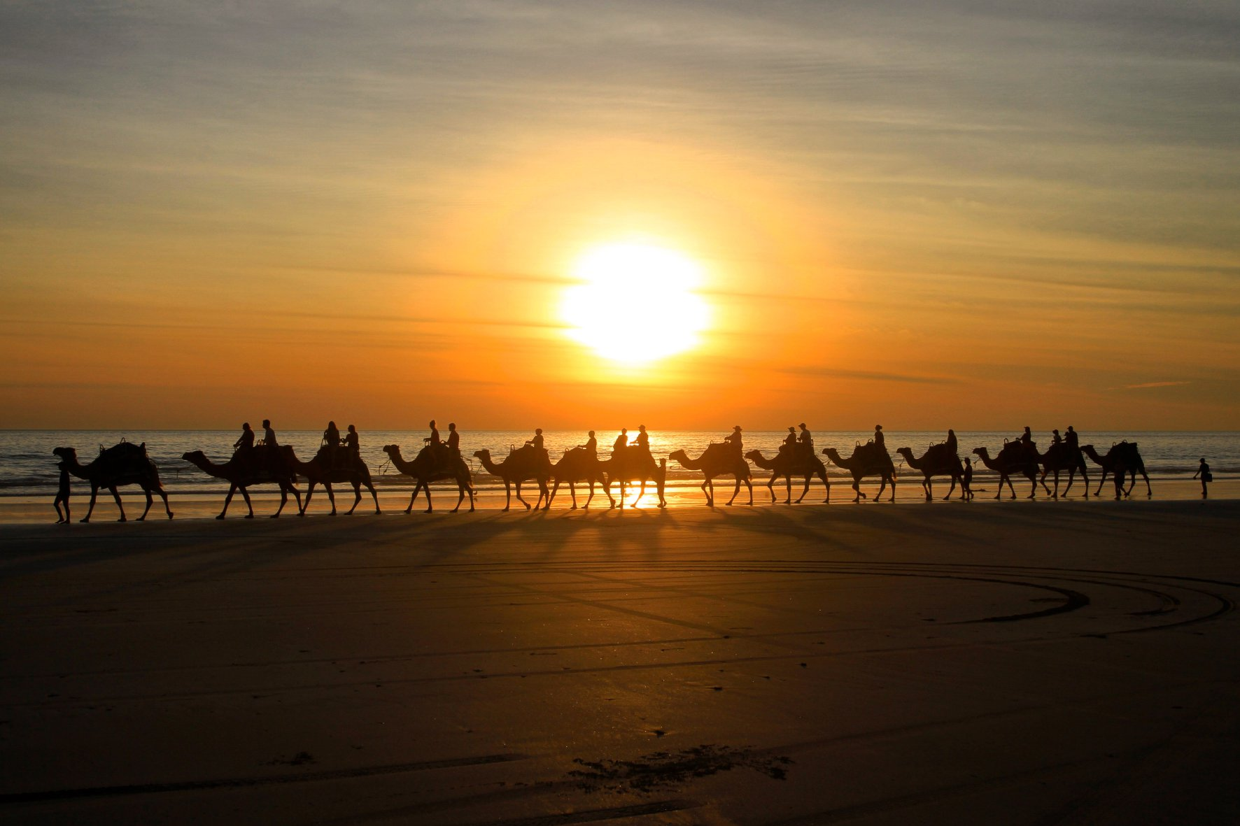 Kamele am Strand Cable Beach in Broome Australien.