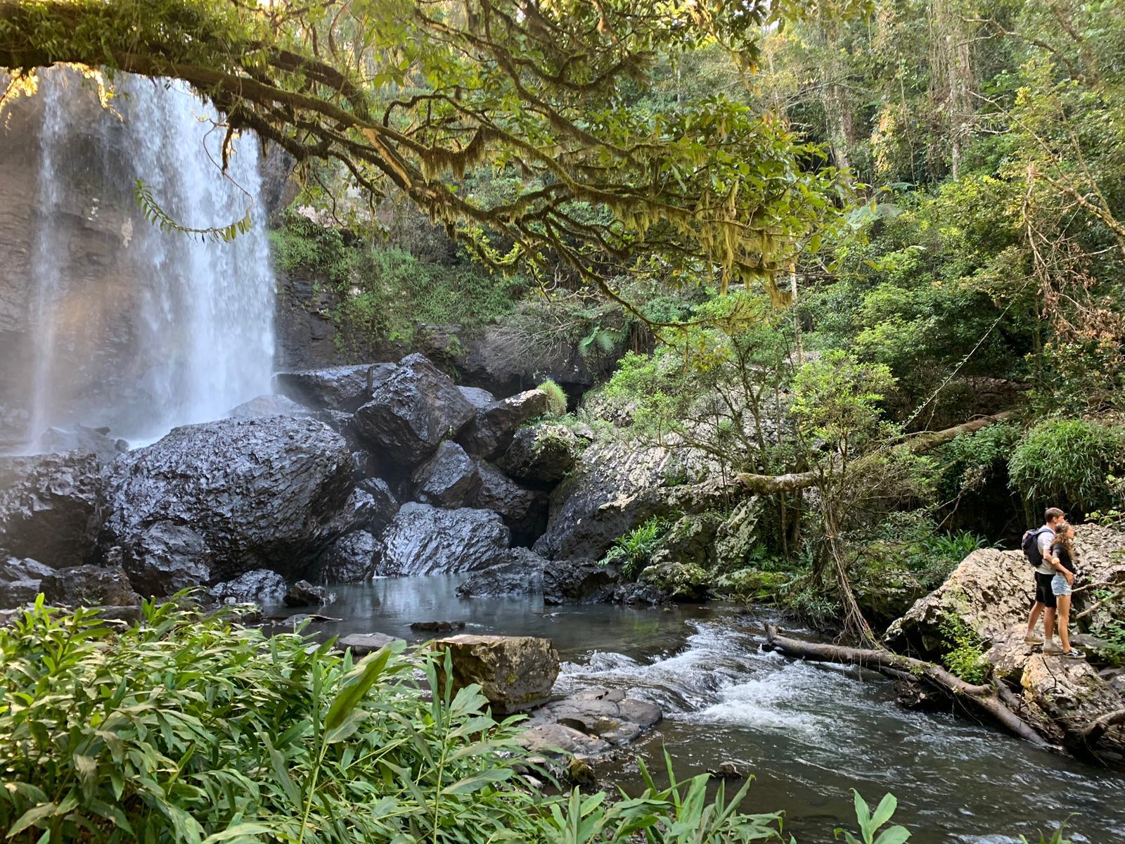 watervallen regenwoud cairns