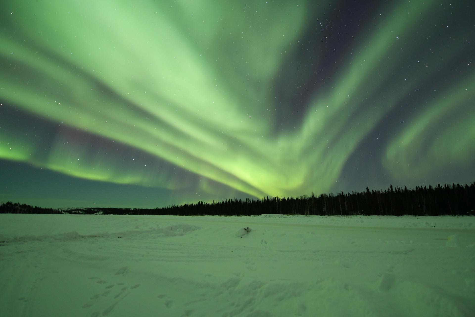 Canada noorderlicht in Whitehorse met een hondenslee.